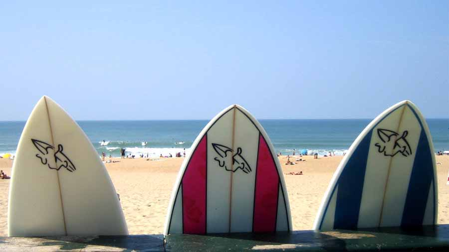 SURF AND LIFE COACHING